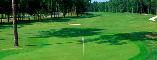 Hilton Head Golf Offers | The Westin Hilton Head Island Resort & Spa