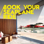 Seaplane Information at W Retreat & Spa Maldives