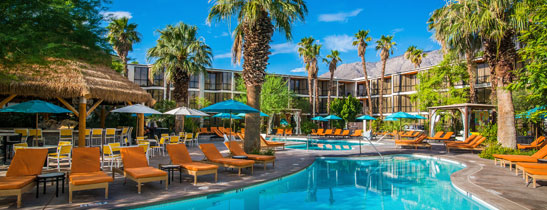 Luxury Palm Springs Hotel - Pool