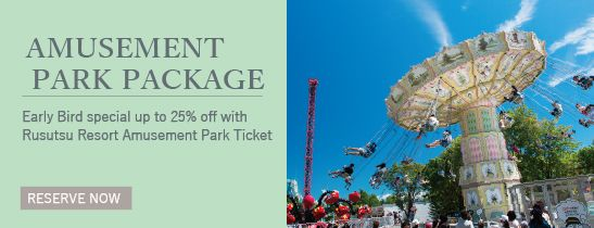 Amusement Park Package