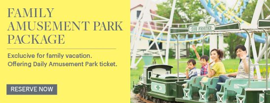 FAMILY AMUSEMENT PARK PACKAGE