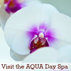 Visit the AQUA Day Spa