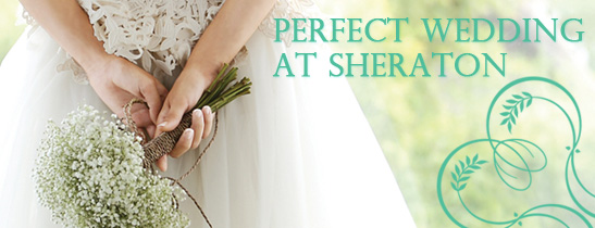 Your Perfect Wedding at the Sheraton