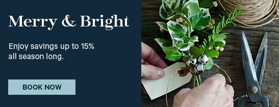 Merry & Bright Holiday Savings